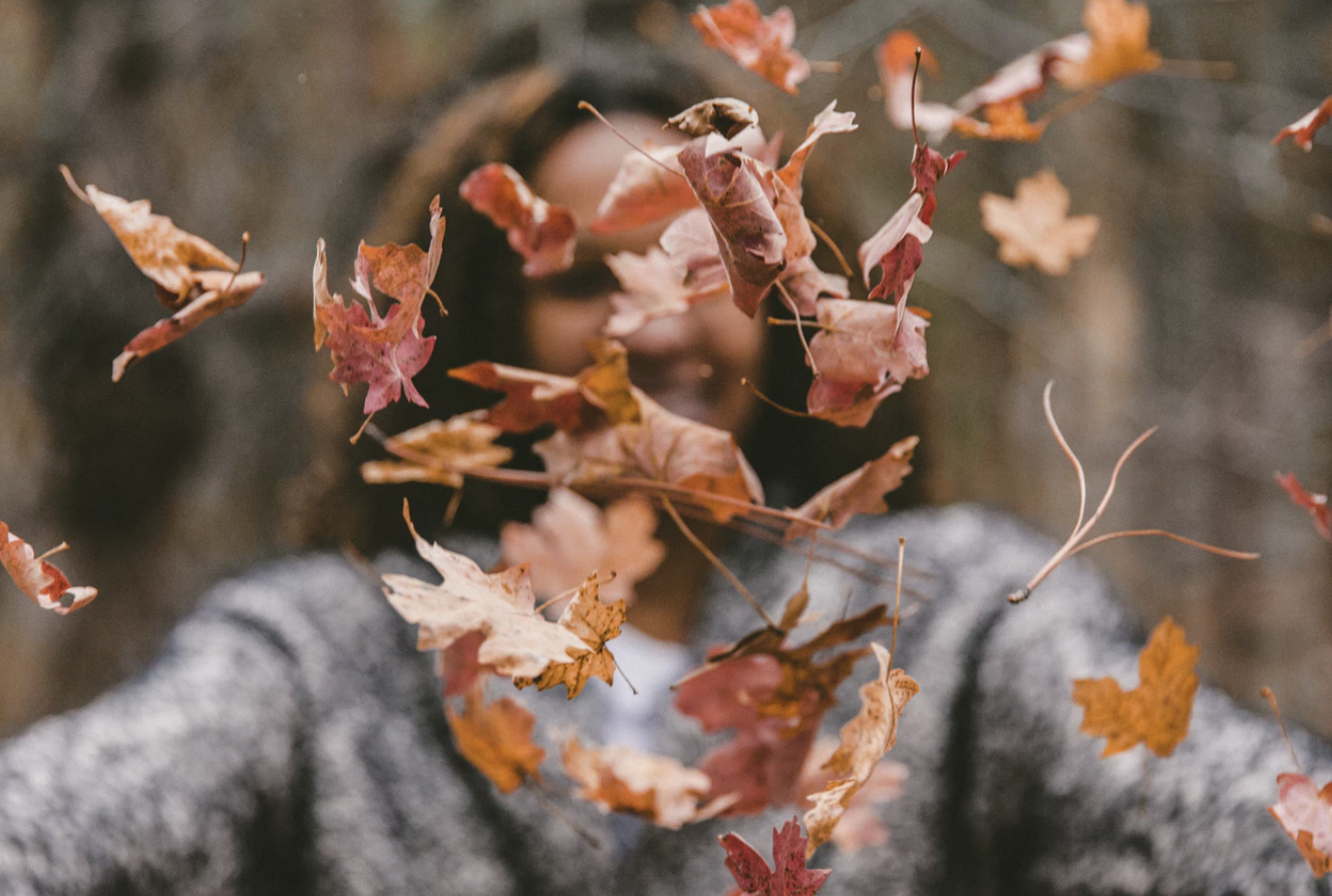 How to Prevent Hair Shedding in the Fall
